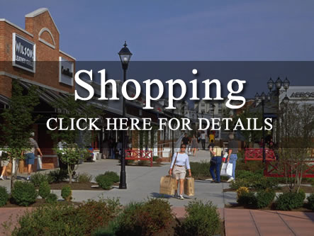 Shopping in Leesburg